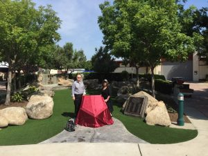 BBQ Picture 102 2015 BUP